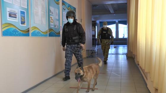 Саперы с собаками зашли в школу