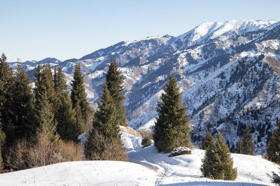 Иностранец поехал на БАО и потерялся в горах Алматы
