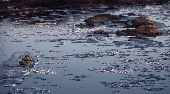 Алматы облысында 19 жастағы жігіт өзенге ағып кеткен баланы құтқарып қалды