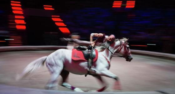 Қазақстандық цирк әртісі Қытайда комаға түсті