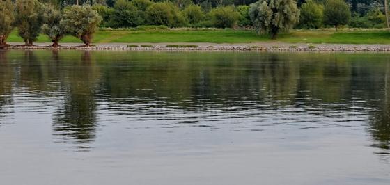 Пляжи в Акмолинской области могут открыться 3 августа