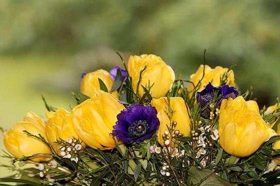 Какой сегодня праздник в мире и Казахстане: 28 мая