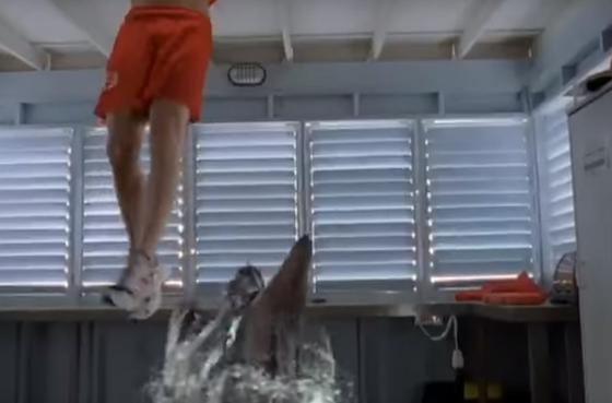 Фильмы про акул: ужасы, топ-10