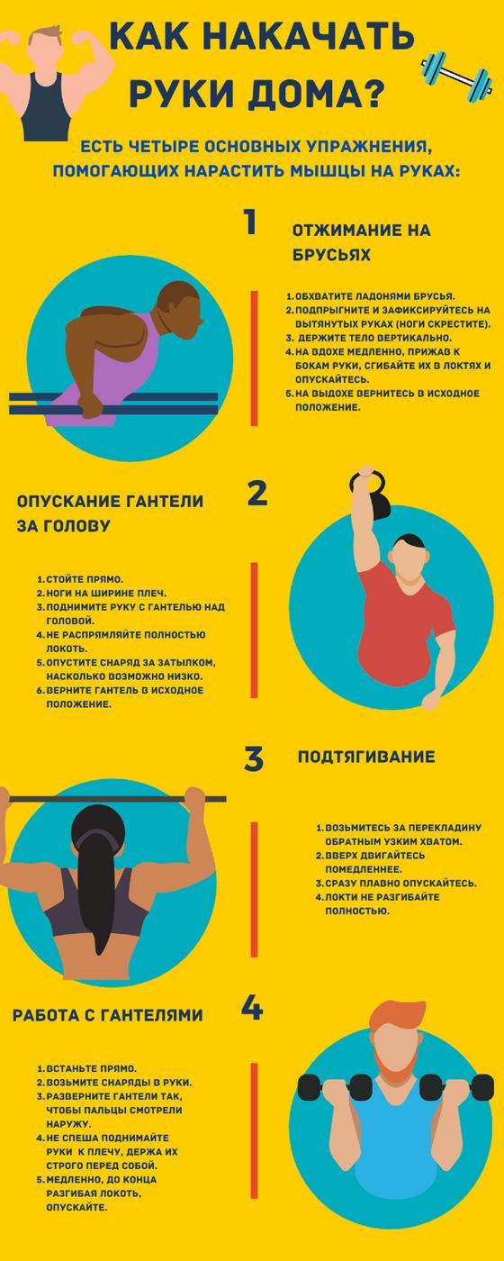 Инфографика рассказывающая как правильно качать руки