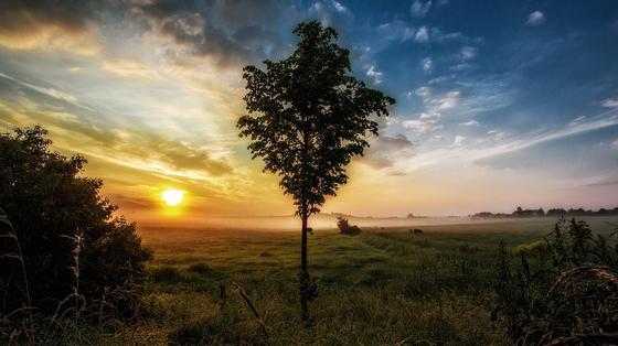 Какой сегодня праздник в Казахстане и мире: 14 июня