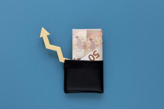 Бумажник с купюрой