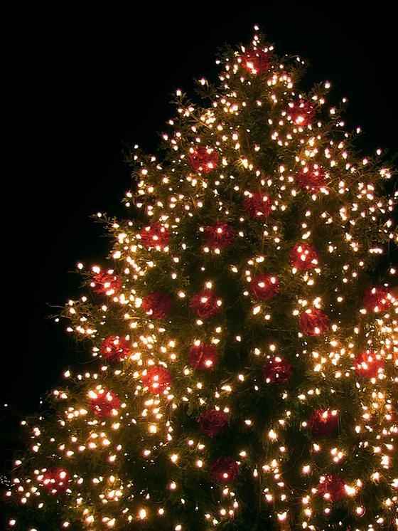Какой сегодня праздник: календарь праздников на 7 января