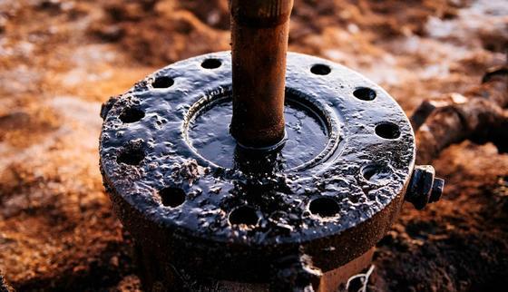 осудили за нефть