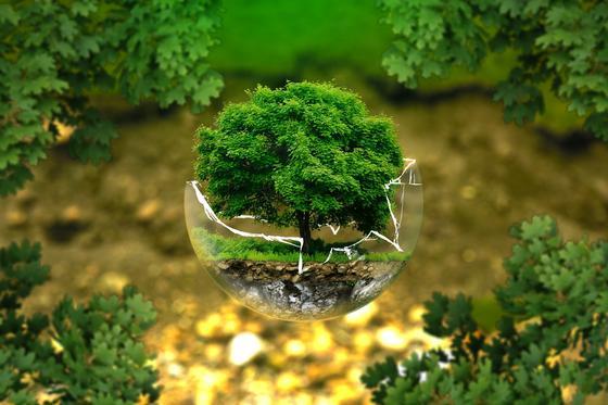 День Земли: когда празднуют, цели