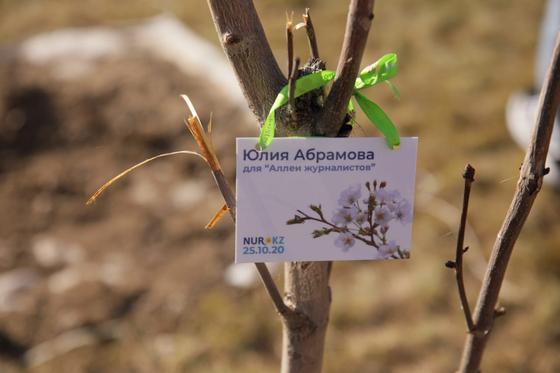 Табличка висит на дереве