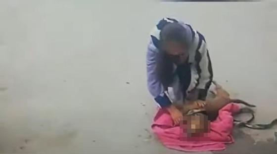 Отравителя животных нашли по камерам наблюдения в Актау (видео, 18+)