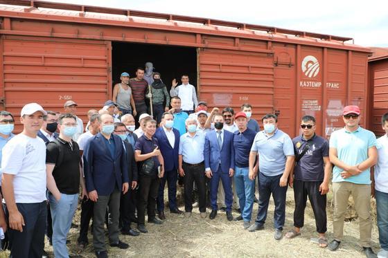 Отправка сена из Туркестанской области