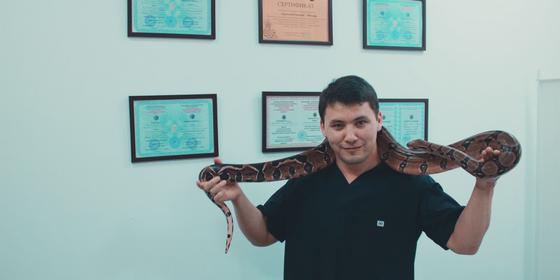 Массаж змеями стали делать в Алматы
