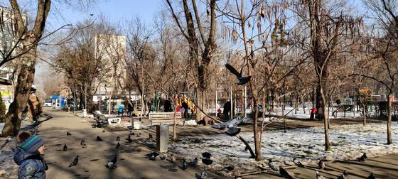 """""""Почему не возле акимата?"""": алматинцы высказались о проведении митингов в парке Ганди"""