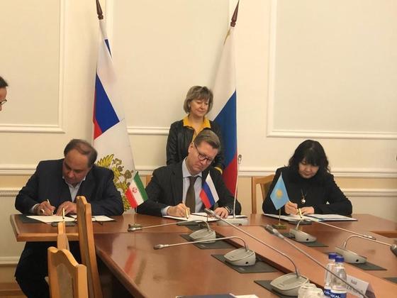 Казахстанские и российские компании будут поставлять пшеницу на иранский рынок