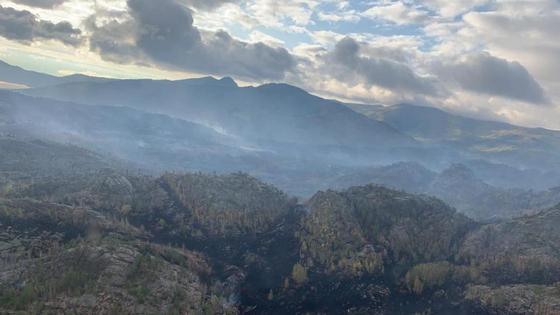 Крупный пожар в Баянауле: огонь тушат 500 пожарных (фото)