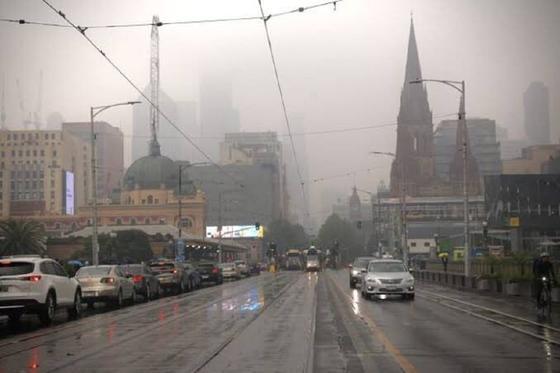 Лесные пожары в Австралии: казахстанка рассказала о ситуации в стране