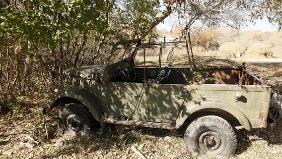 Машина одного из местных жителей стоит у дерева