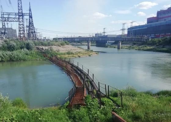 Мертвую девушку обнаружили рабочие в Павлодарской области