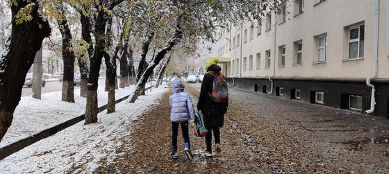 Занятия отменили в школах СКО 27 февраля