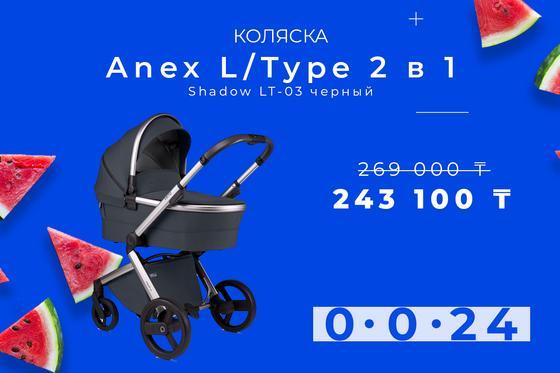 Anex L type 2 в 1