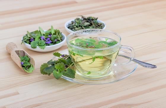 Чашка с травяным чаем и блюдца с травами
