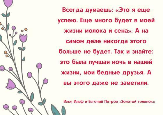 Цитата Ильфа и Петрова