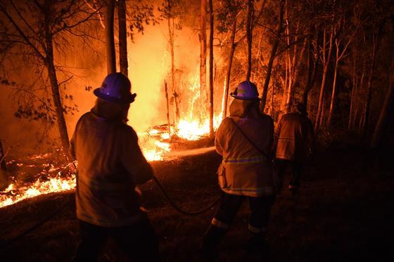 Посольства нескольких стран закрылись из-за пожаров в Австралии