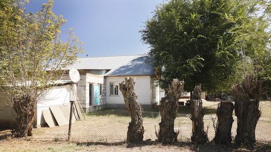 Дом стоит за деревьями