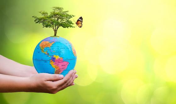 Руки с планетой, деревом и бабочкой