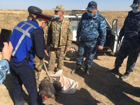 Задержание охотников в Жамбылской области