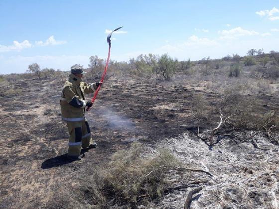 Два крупных пожара тушат в Жамбылской области (фото)