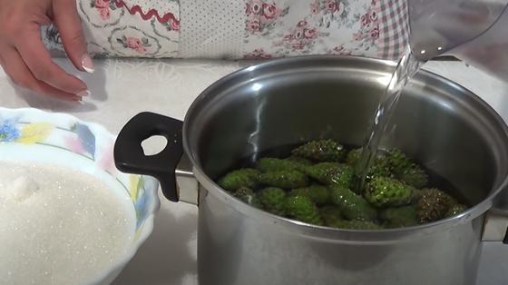 Зеленые шишки в кастрюле заливают водой