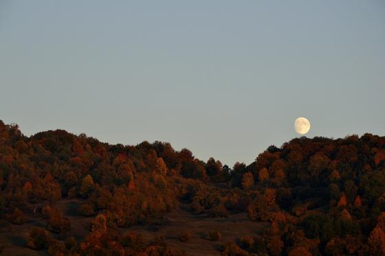 Луна осенью