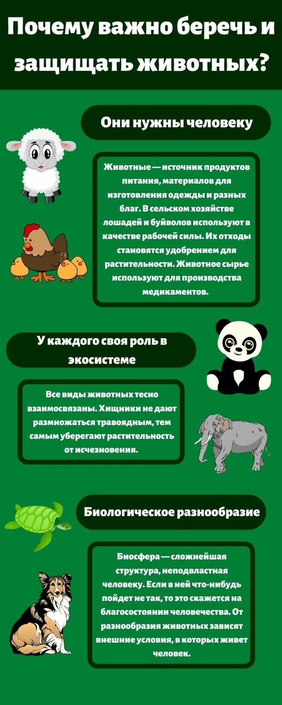 Почему важно беречь животных