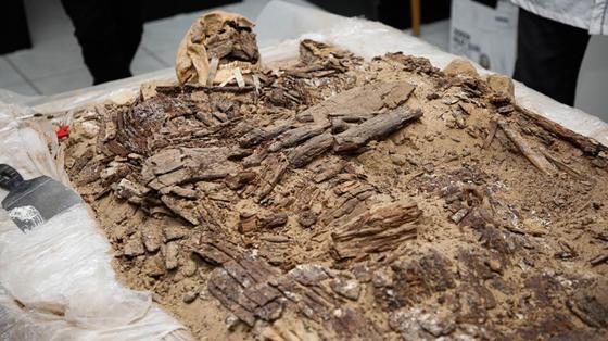 Артефакты, найденные в Атырауской области