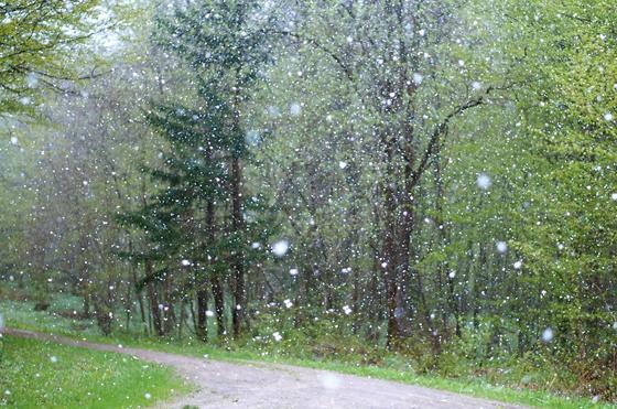 Туман, ураган и град: какая погода ждет казахстанцев 2 апреля