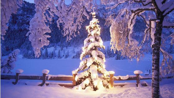 Прогноз погоды на новогодние праздники: мороз до -25 прогнозируют синоптики