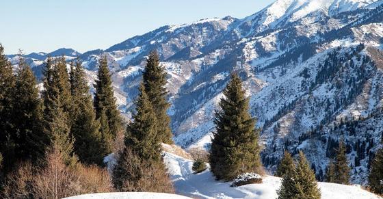 Сход лавин ожидается в горах Алматы в ближайшие 3 дня