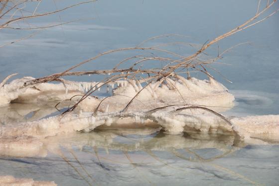 СОль на берегу Мертвого моря