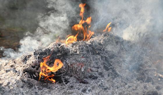 Запах гари: в ДЧС Атырауской области ответили на жалобы россиян