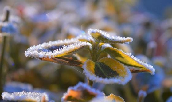 Погода на 3 дня: похолодание ожидается в Казахстане