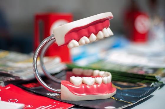 Челюсть, зубной протез