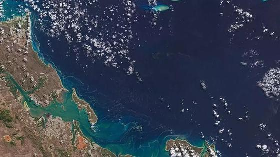 """""""Мертвая зона"""" приближается к Аравийскому морю, рассказали ученые"""