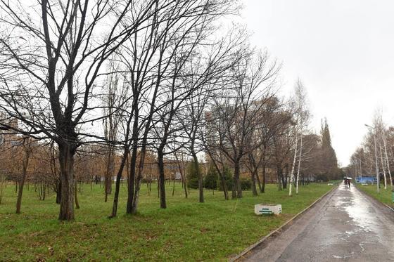 Участок под строительство ЖК в парке «Южный» вернут государству