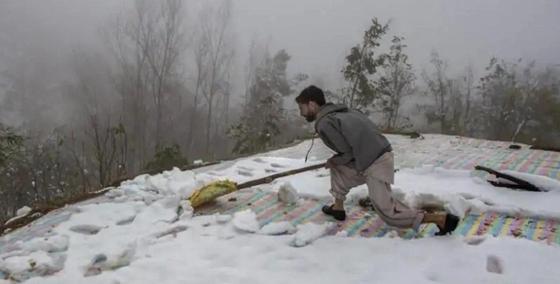 Смерть девочки и потеря урожая: выпавший в ноябре снег стал причиной трагедии
