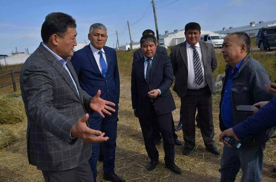 Во всех опорных сёлах Павлодарской области построены новые ветеринарные пункты