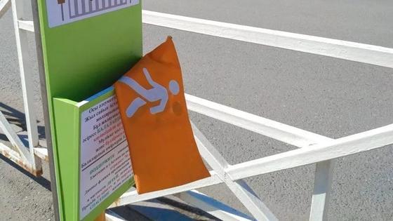 Светоотражающие флажки на пешеходе Астаны разворовали за сутки