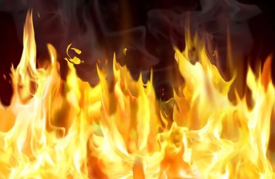 Наурзумский заповедник загорелся в Костанайской области