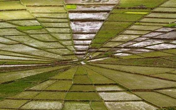 Оптические иллюзии, которые отучать вас верить собственным глазам